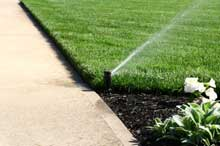watering_sprinkler-1